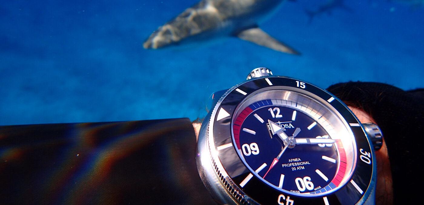 Davosa Apnea Diver Dive Watches